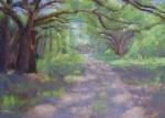 Through the Oaks