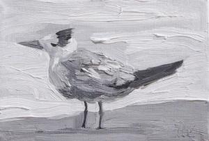 Torrit Bird