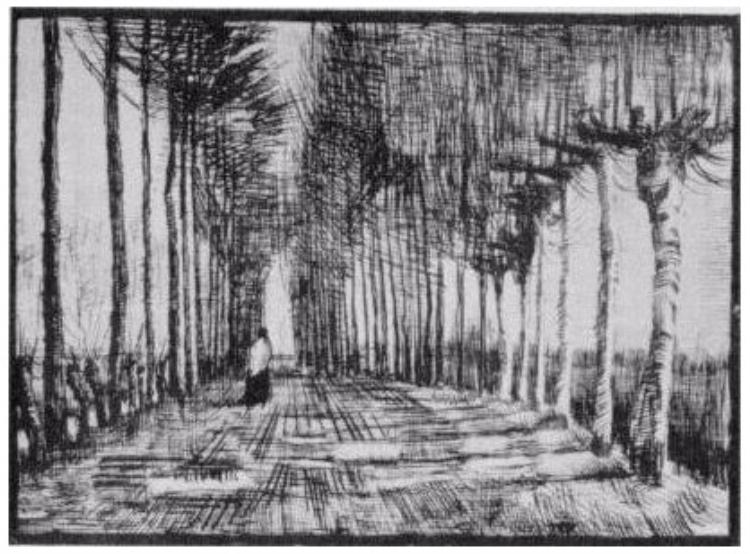 Van Gogh Drawings Trees van Gogh – Using All...