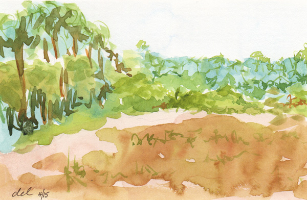 Gate Marsh - 5x7 - watercolor plein air