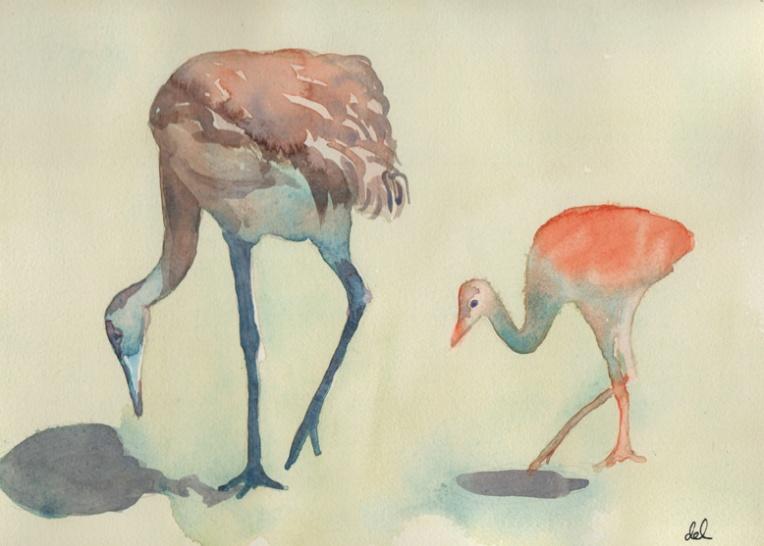 Spring Cranes - watercolor