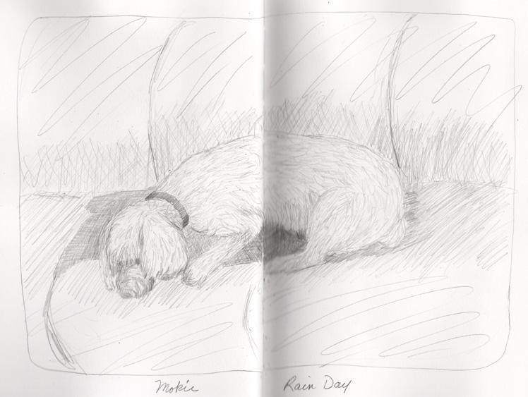 sketchbook-lake-lure-nc-5