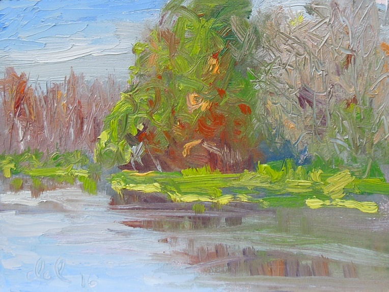 Kissimmee River Bank - 6x8 oil on panel
