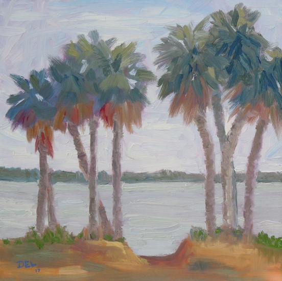 Palms at Indian Riverside Park - 12x12 - oil