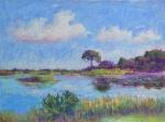 Savannah - 12x16 - pastels
