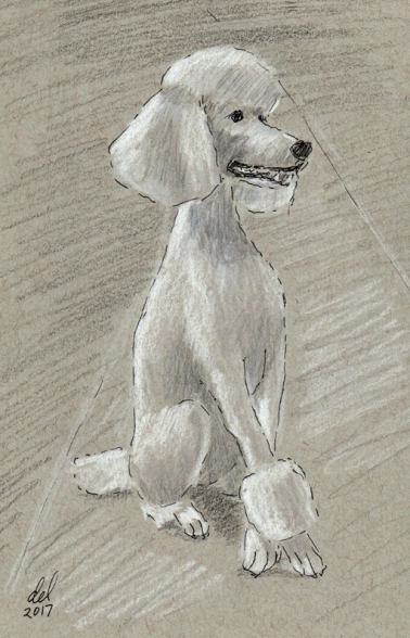 Annie - Ink, Black and White pencil on Toned Paper