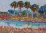 Blue Creek Palms